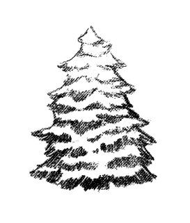 Kresba stromu_2