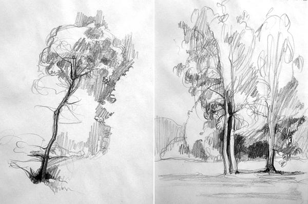 Jak Se Kresli Strom Atelier Pro Kocku
